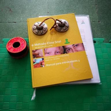 mindfulness manual